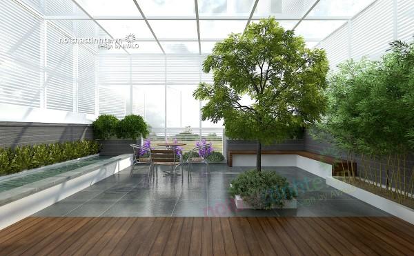 Vườn trên mái nhà lô phố anh Phong